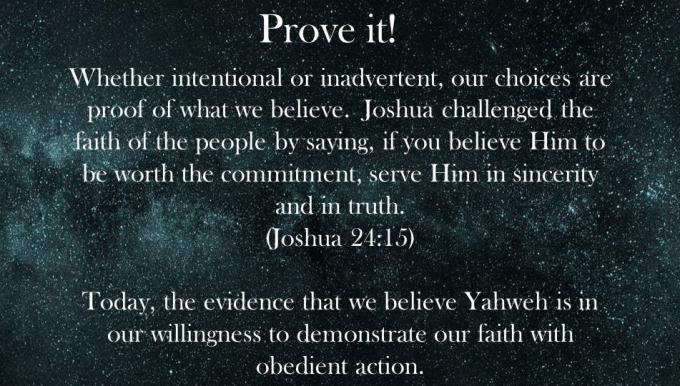 DWB excerpt_prove it
